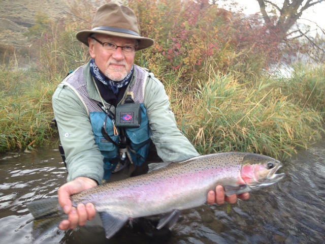 deschutes river steelhead fly fishing – fly fishers place, Fly Fishing Bait